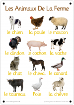 French Farm Animals Photo Outdoor Learning Board