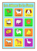 French Farm Animals Poster